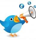 bigstockphoto_Twitter_Bird_Announce_5263769