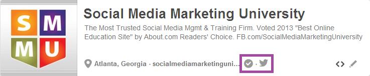 Pinterest Promotion Twitter